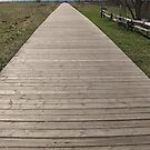 Boardwalk In Cobourg by nikspix