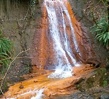 North Fork Falls by YogiColleen