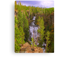 Scarring the canyon Canvas Print