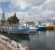 Fishing boats at Bermagui by Roger Neal
