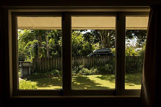 Urban Forester - Brisbane by Daniel Rankmore