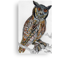 Gevlekte ooruil / Spotted Eagle Owl Canvas Print