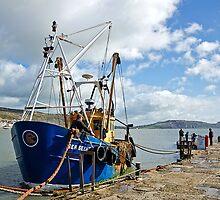 Sea Seeker ~ Lyme Regis by Susie Peek