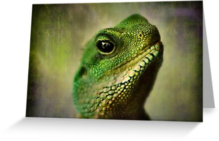 Chinese Water Dragon by missmoneypenny