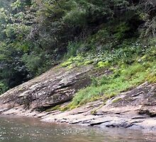 """""""The Chestatee River 02"""" by mls0606"""