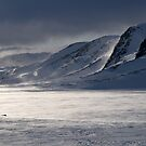 Winter mist by Finnsnut by Algot Kristoffer Peterson