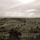 Tuscan Countryside by ameeks22