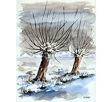 WINTER IN THE DUTCH POLDER - AQUAREL Photographic Print