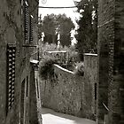 A Tuscan Road by ameeks22