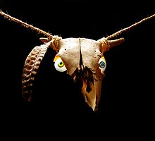 Skull with Hemp Rope by OlenJames