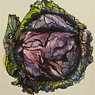 Purple cabbage. Elizabeth Moore Golding 2012Ⓒ by Elizabeth Moore Golding