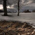 Wyoming Winter by Robert Mullner