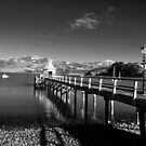 Akaroa-The First French Settlement in New Zealand.  by Ralph de Zilva