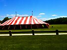 "Drive-by Shooting #15 - The Circus in in Town! by Christine ""Xine"" Segalas"