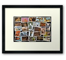 25 Faces for 25 Years Framed Print
