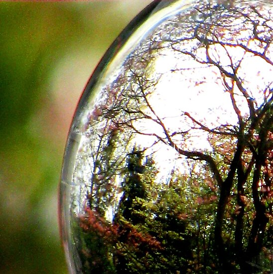 Spring In A Crystal Ball by AngieDavies