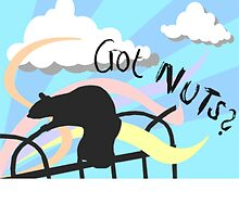 Got Nuts? by The Lazy Beach