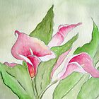 Pink Calla Lily by Riana222