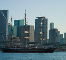 Tall Ship Biscayne Bay Miami Florida by Henry Plumley