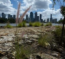 Weeds with a good view! by PhotosByG