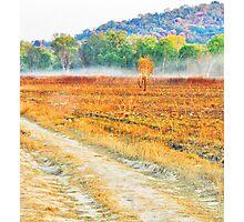 Roads Adventured Photographic Print