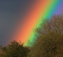 Rainbow by Doug McRae