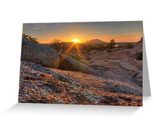 Snakes Eye View Greeting Card