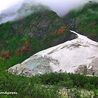 Rocky mountain glacier by Erykah36