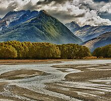 Dart River by meredithnz