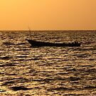 Sunset boat Silhouette by Karue
