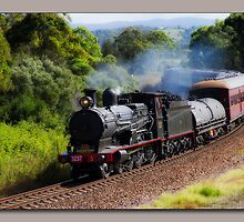Steam Train Taree nsw by kevin chippindall