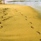 Footprints in the Sand by Nathan Probert