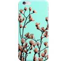 spring sense iPhone Case/Skin