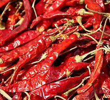 Red Chilies Drying Kathmandu by SerenaB
