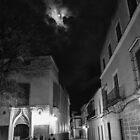 Watchful Moon by tkubiena