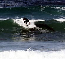 Surfing at 17 Mile by akitts