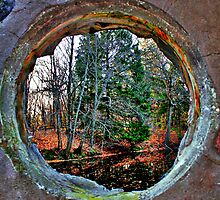 Window by EBArt