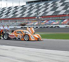 Automotive industry 2012 Rolex 24 at Daytona - #77 Frisselle Racing Combo Ford-Dallara by DanaSchultz