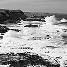 Phillip Island by Leanne Nelson