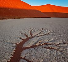 Baked Earth by Jill Fisher
