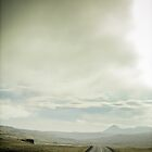 Crazy views of Iceland,  Road. by Cappelletti Benjamin