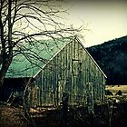 Catawba Valley Barn by tanya breese