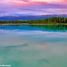 Pink upon turquoise by Erika Price