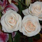 ...yesterday in the House are enjoying roses..piu' di 1200 visualizzaz ad oggi  dicembre 2012   VISUALIZZAZIONI  2012---RB EXPLORE 17 APRILE 2012 --- by Guendalyn