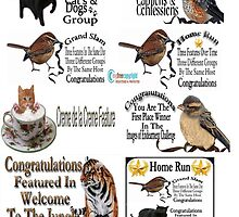 ✿⊱╮ BANNERS USED ON REDBUBBLE CREATED BY RAPTURE ✿⊱╮ by ✿✿ Bonita ✿✿ ђєℓℓσ