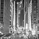 Sunday Night in Central by AlMiller