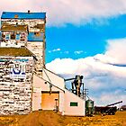 Old Grain Elevator - Grassy Lakes, Alberta by Laurast
