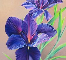Dark Knight Purple Iris by lanadi