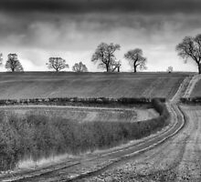 The Long and Winding Road by reddragon56