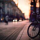 Evening Light in Vilnius by Vaidotas Mišeikis